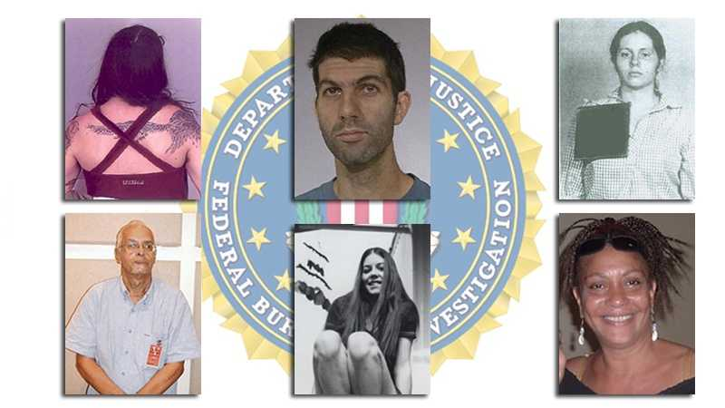 fbi domestic terrorism teaser image
