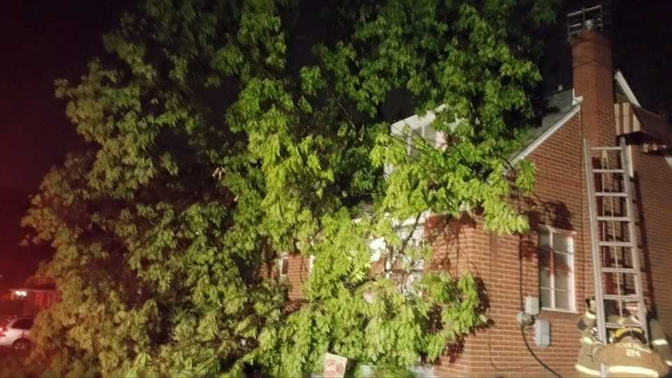 Viewer submitted photo via Facebook -- In Verona tree goes into a house on Dewayne Drive