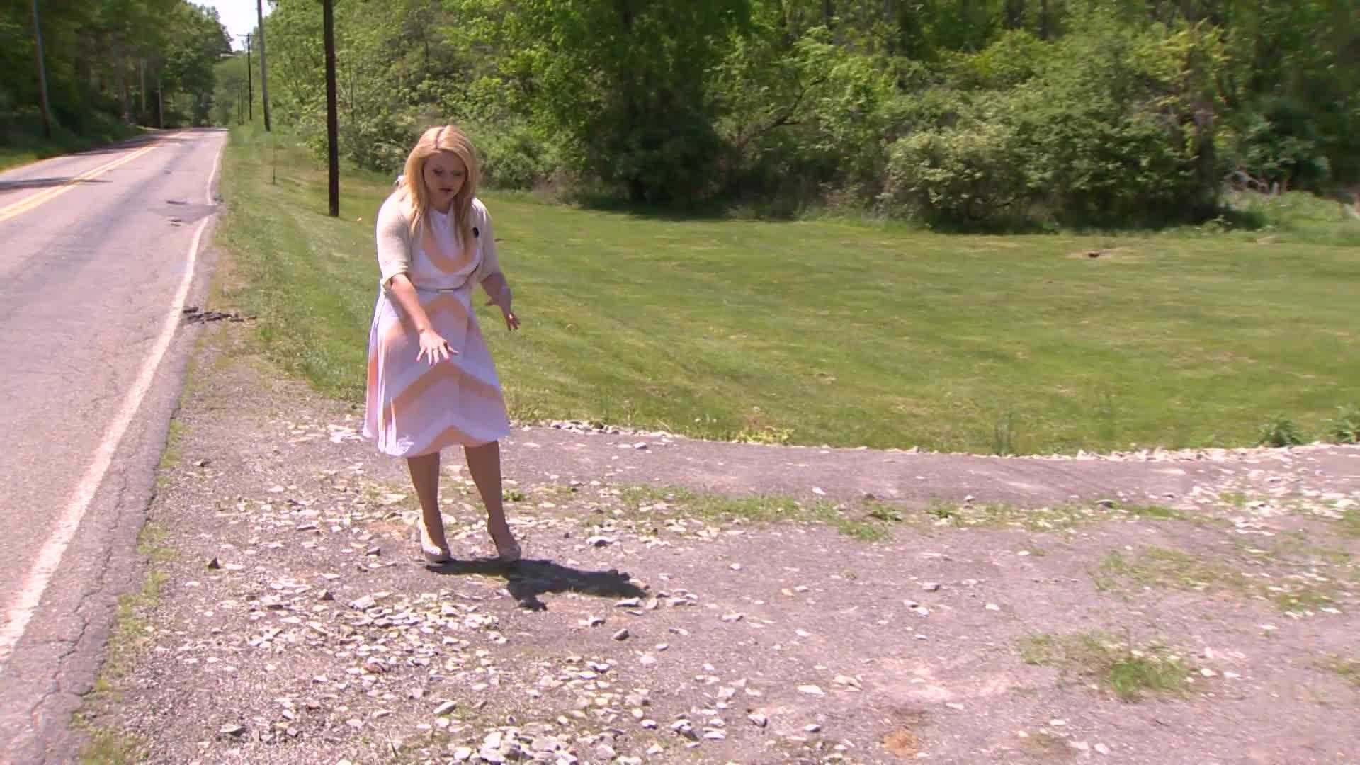 Pittsburgh's Action News 4 reporter Ashlie Hardway points to the area where the alleged sex assault happened.
