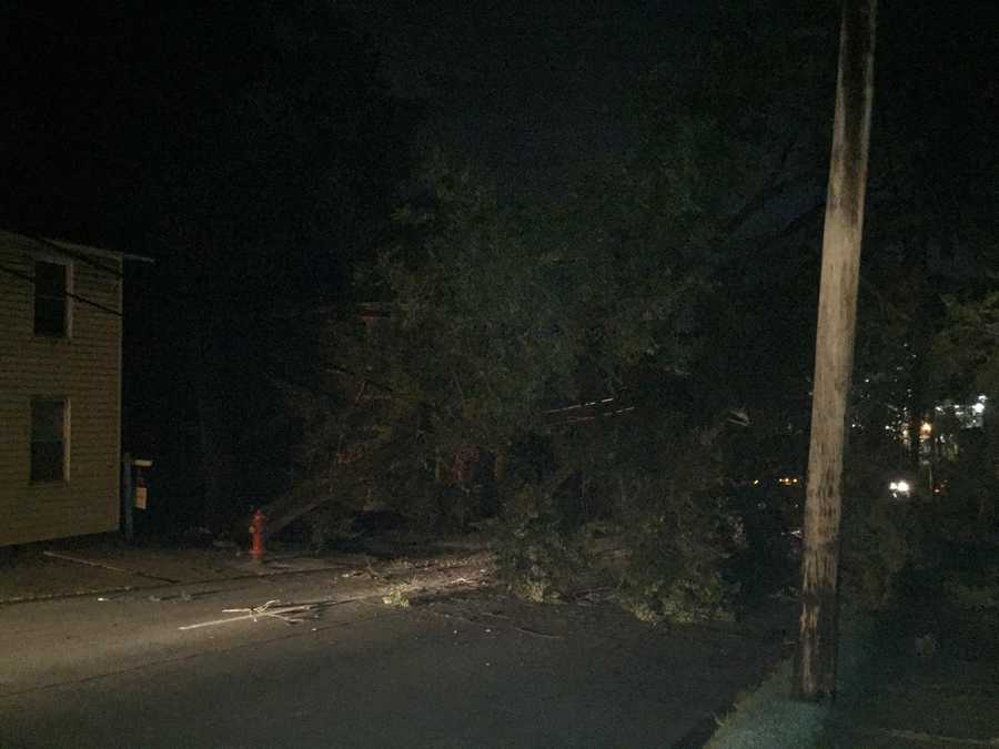 Large tree brought down wires, causing power outage in Greensburg on Wednesday morning