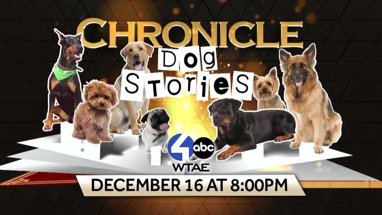 Catch a sneak peak of our next edition of Chronicle with host Sally Wiggin and co-host Mike Clark on man's best friend.