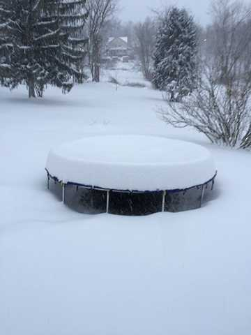 A trampoline covered in Hopwood, where there was at least 21 inches of snow. (Photo: Tpikulsky)