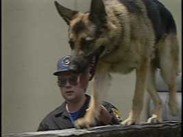K-9 JuppPittsburgh Police DepartmentEOW: Friday, June 21, 1991Cause: Jupp was struck and killed by a vehicle while attempting to protect his handler from being attacked by stray dogs.