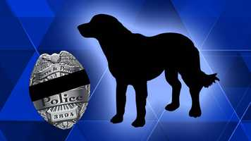 K-9 JokerPenn Hills Police Department, PAEOW: Monday, February 2, 1987Cause of Death: Joker was stabbed to death while attempting to apprehend two teenagers who had stolen a car.