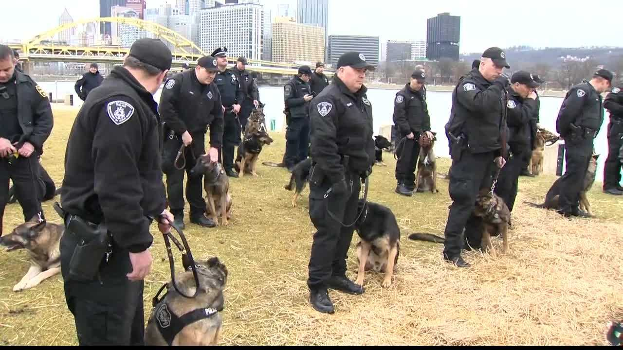 Officers from across the city, county and even the state gathered in the North Shore to say goodbye and honor K-9 Aren, who was killed in the line of duty Sunday.
