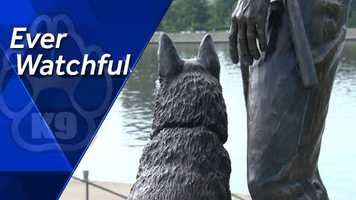 Remembering the loyal companions who have given their lives to ensure their handlers, fellow officers and citizens stay safe.
