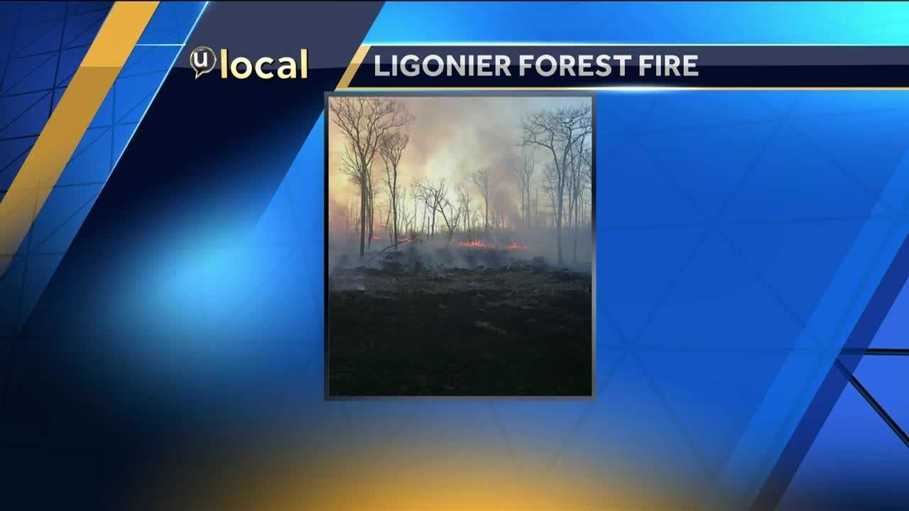A forest fire burned in Westmoreland County Saturday evening. (Photo courtesy u local user)