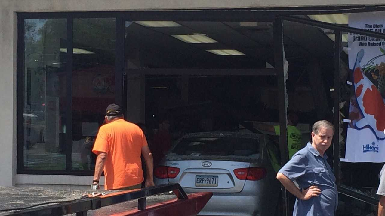A car crashed through the entrance of Elmer's Aquarium in Monroeville Saturday afternoon.