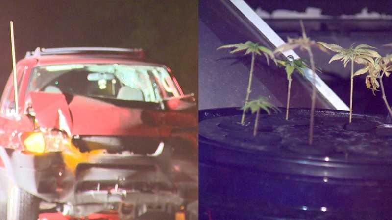 img-Marijuana found after car hits home in Baldwin Borough