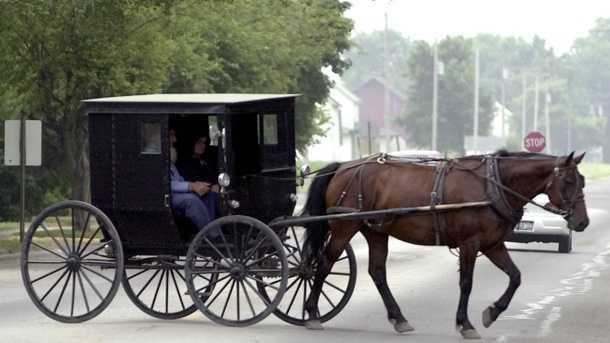 Amish Buggy stock