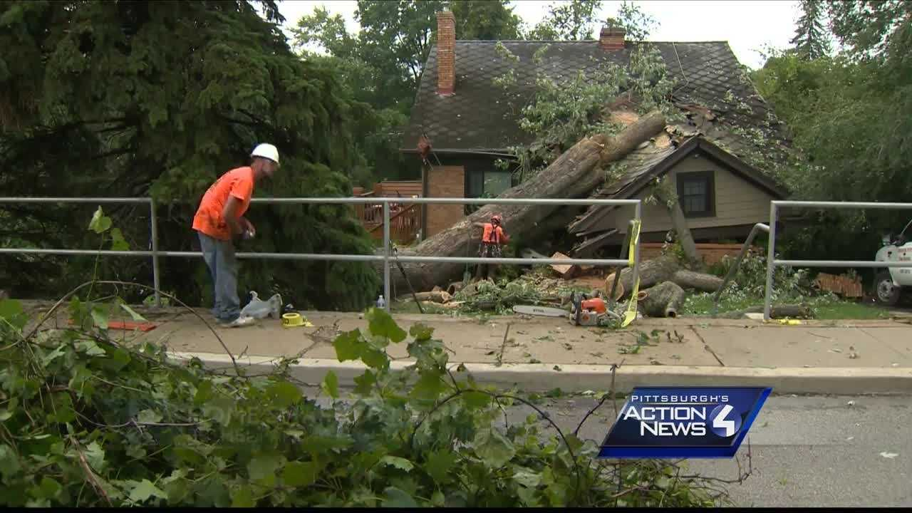 A Bethel Park family was frightened Sunday evening when a violent storm ripped a massive tree from its roots and tossed it onto their home.