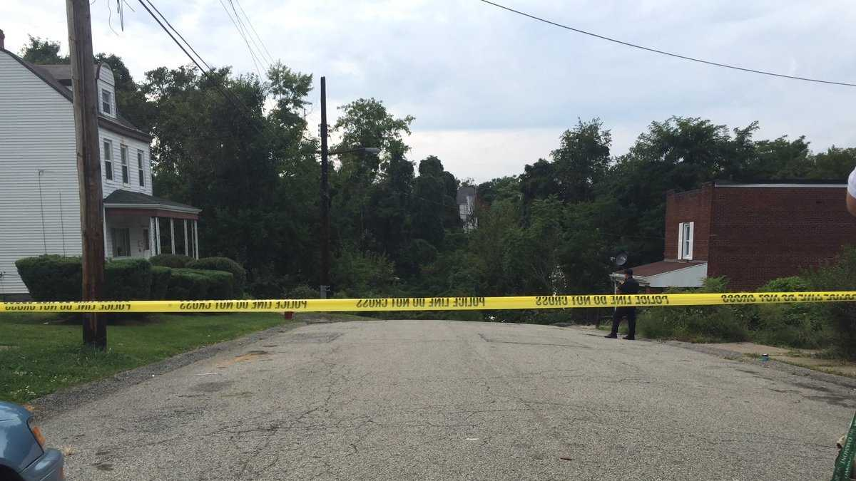 A girl was found shot to death in Homewood West Saturday afternoon, a city official said. (David Kaplan)