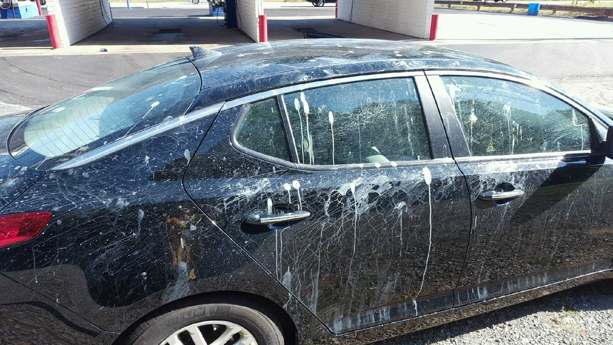 img-Trip to the car wash ends in paint-splattered mess