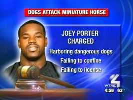 Sept. 21, 2006:  Joey Porter faces minor charges after his pit bulls apparently got loose and killed a neighbor's pony in Pine Township.Read Story
