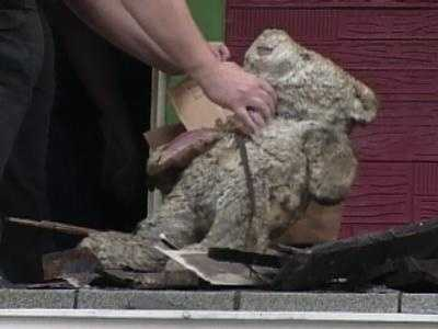Investigators found burned toys and stuffed animals in the gutted home on Winslow Street.