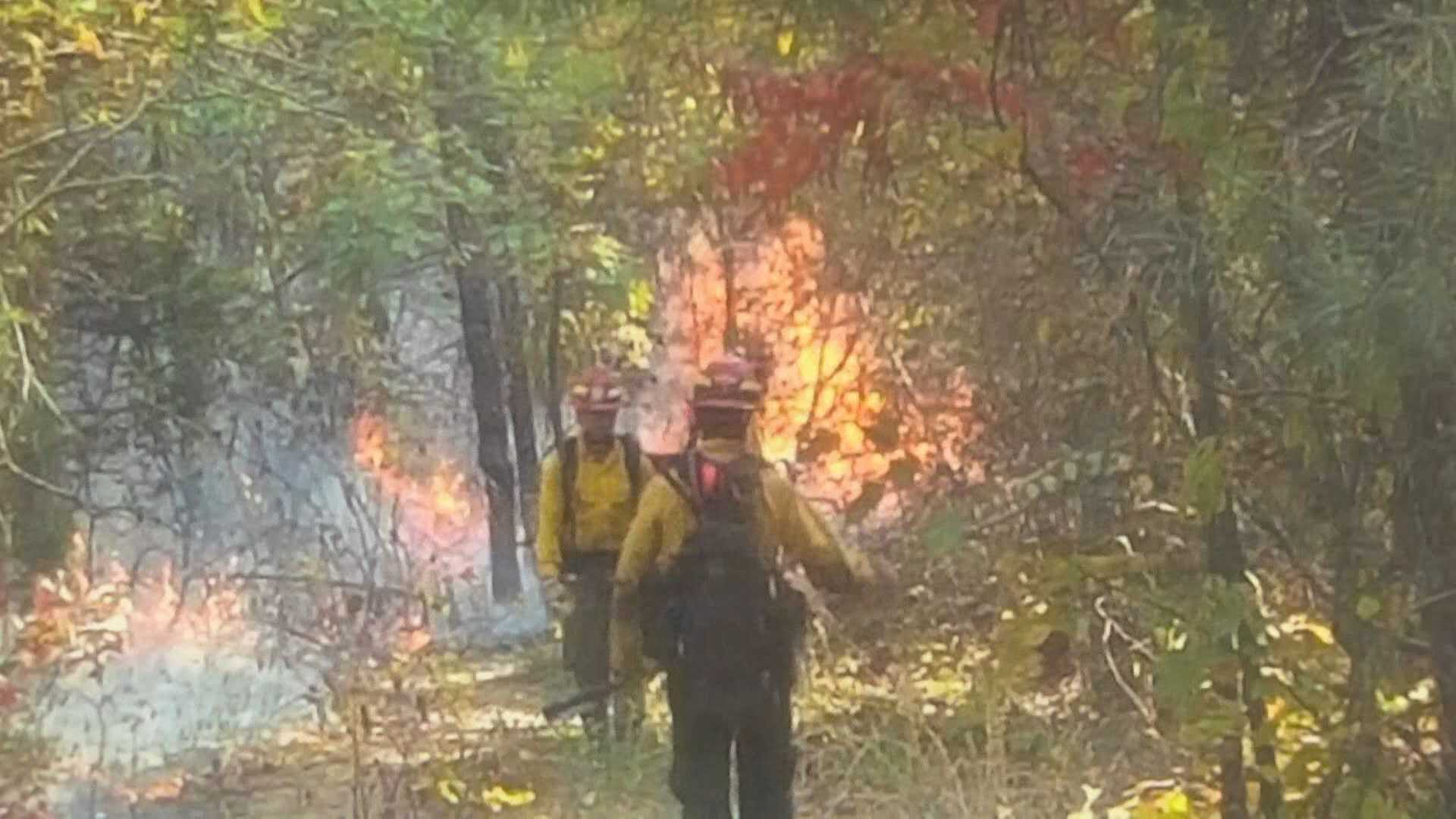 An inferno continues to burn in the Sipsey Wilderness of the Bankhead National Forest.