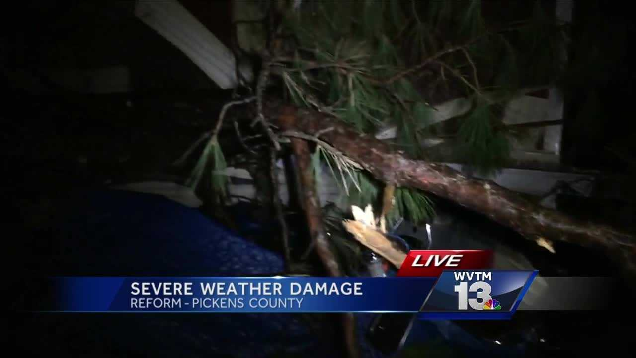Two trees crashed through a home in the Reform area during Tuesday night's storms.