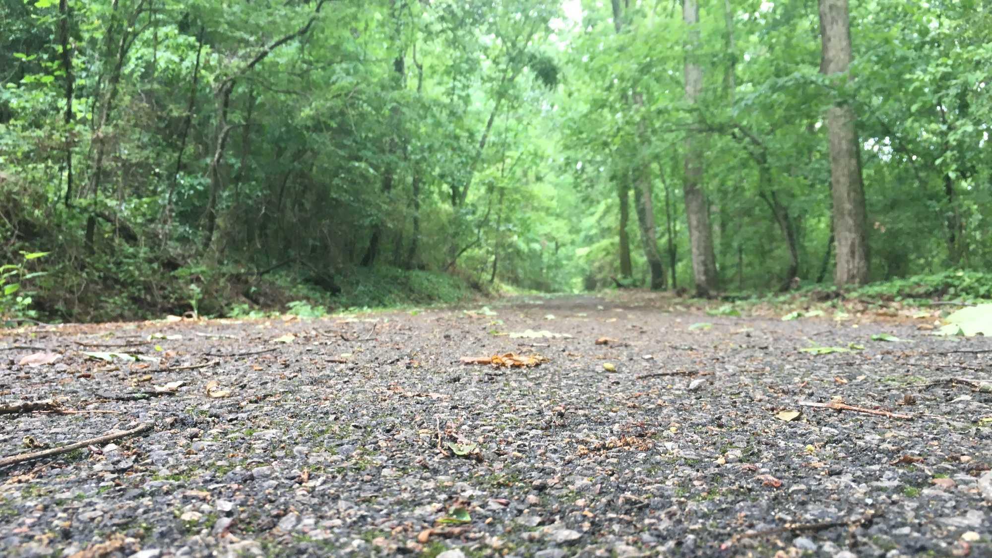 Vulcan Trail.jpg