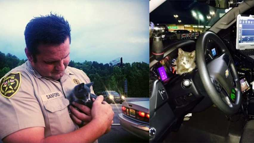 "Jefferson County Deputy Tim Sanford cuddles ""Atlanta,"" a kitten he found in the engine compartment of a car that suffered a flat tire while driving from Atlanta."