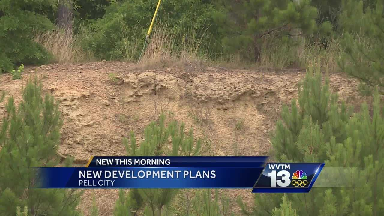 Movie theater and bowling alley part of $9 million development plan in Pell City