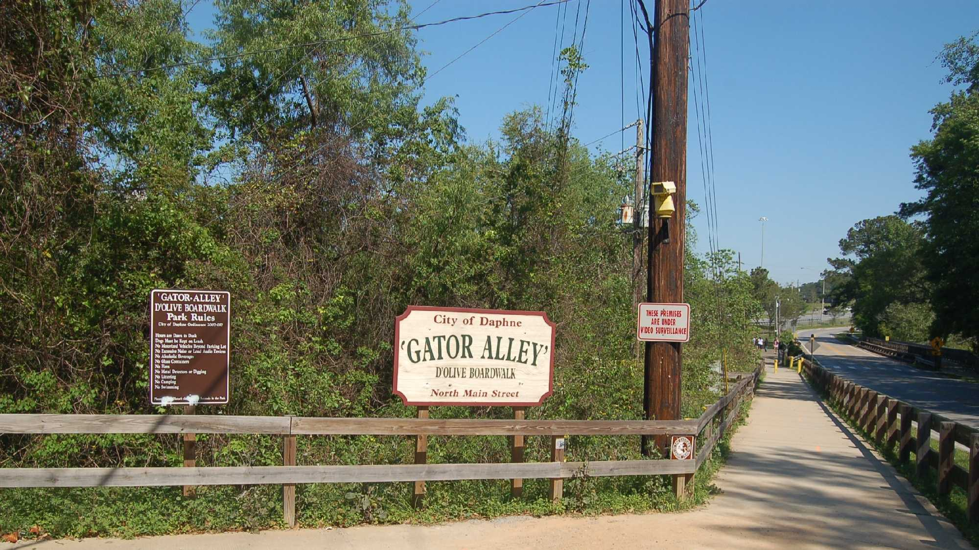 0304_TrailheadToGatorAlley.jpg