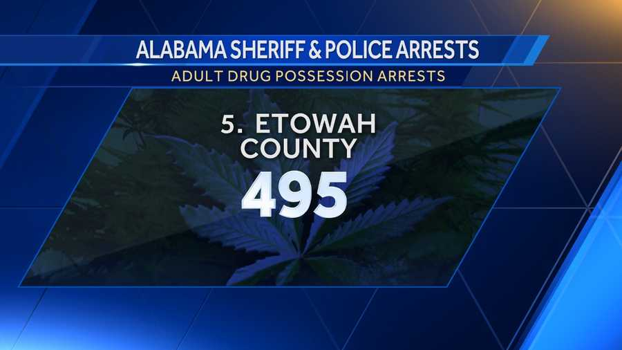 Opium/Cocaine: 99Marijuana: 271Synthetic drugs: 12Other: 113