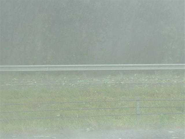 Hail on the side of a road in Davie County