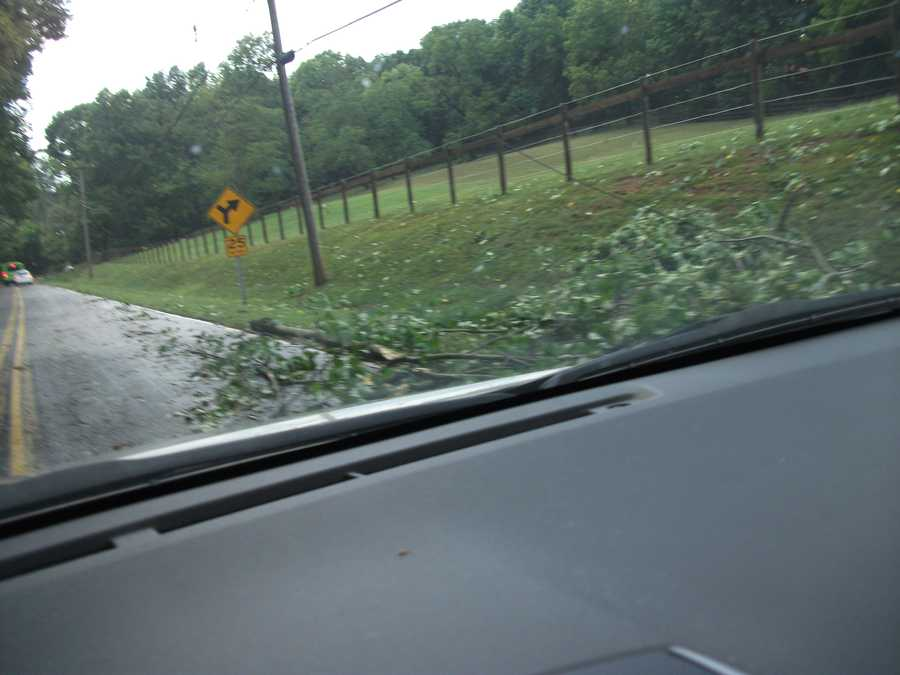 Several trees and power lines down and traffic jams as vehicles had tomaneuveronto one side of the street or turn around.