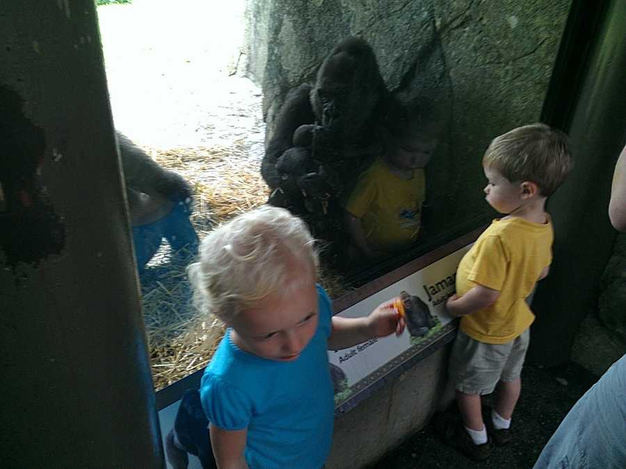 The news is a big hit with the kids! (Photo by WXII's Margaret Johnson)