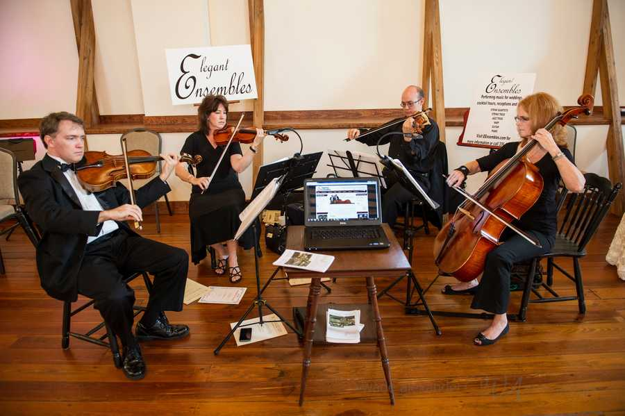 Elegant Ensembles played music at the WinMock Bridal Show and talked with guests to tell them about all their entertainment possibilites.