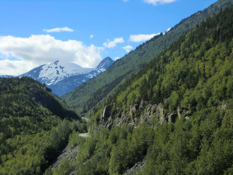 The White Pass Train leaves from Skagway, Alaska and is included in the tour groups cruise ship to shore trips.