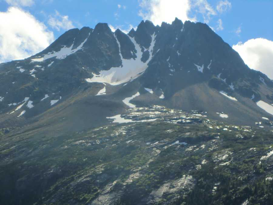 While on the White Pass Train the tour group saw beautiful snow capped mountains.