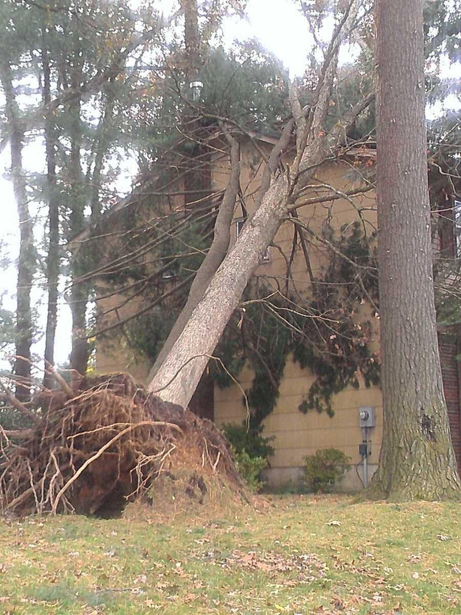 WXII's Stephanie Berzinski, a New Jersey native, visited her home state this week and uploaded these photos of storm damage from Sandy.
