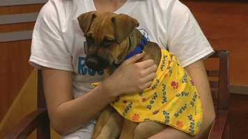 Meet Jake, WXII12's Pet Of The Week.  Paige Fulk from North Davidson High School has more.