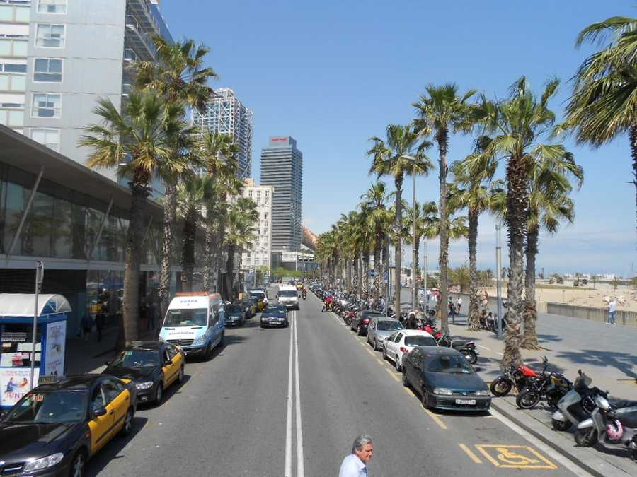 Downtown Barcelona is thriving and the beautiful palm trees and ocean is great for the wedding party to visit. Also, take some great wedding photos on the beach and/or have a beach ceremony.
