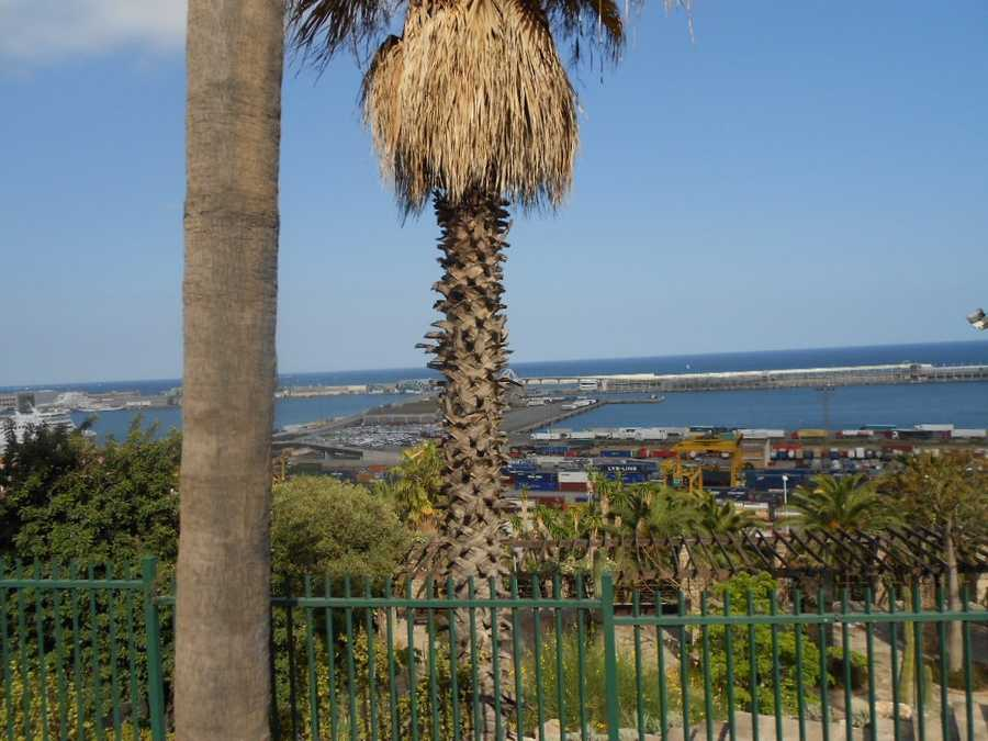 Park in the hills shows a beautiful ocean great for siteseeing honeymooners. (Shipping yard below with railway cars).