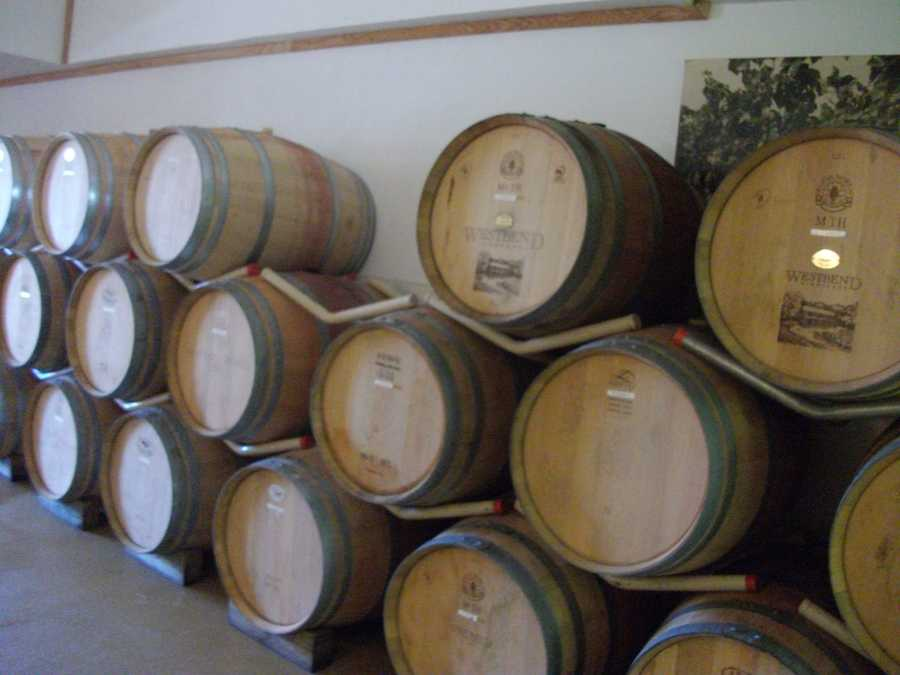 So much to see in all the processes of winemaking from the grapes to the bottle. (Westbend Vineyards and Brewhouse)