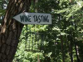 Sanders Ridge Vineyard has tours and wine tasting for the groups to enjoy.