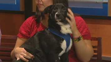Meet Muffin and Tator, WXII12's Pet Of The Week.  Collen Goetzke and Maggie Hawks from Second Chance Animal Rescue and Adoption has more.