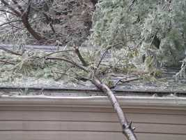 A Sparta home was damaged by Tuesday morning ice that felled a large tree limb.