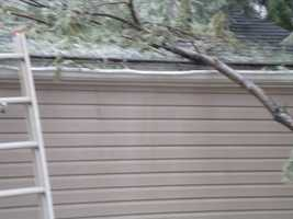 "She said her son described the sound of the limb hitting the home as a ""loud boom."""