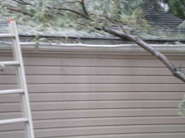 """She said her son described the sound of the limb hitting the home as a """"loud boom."""""""