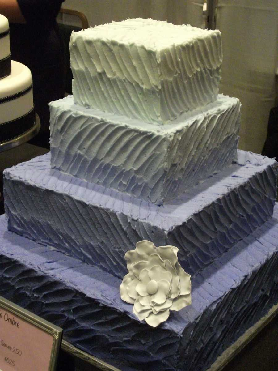 """Purple Moon Cakes and Confections made this """"Purple Ombre"""" butter cream cake to match two of the wedding colors you may want to use for your wedding. Nice touches with a simple design makes the cake look elegant."""