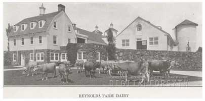 Reynolda Dairy Farm, located in Reynolda Estate, 1918.Courtesy of Forsyth County Public Library Photograph Collection.