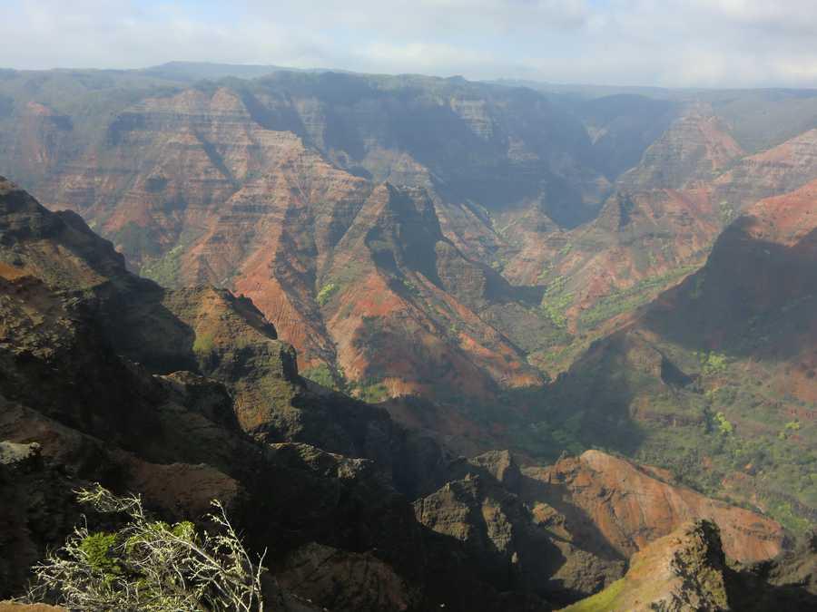 Waimea Canyon is one of Kauai's State Parks. Seasonal trout fishing, pig and seasonal goat hunting nearby available.