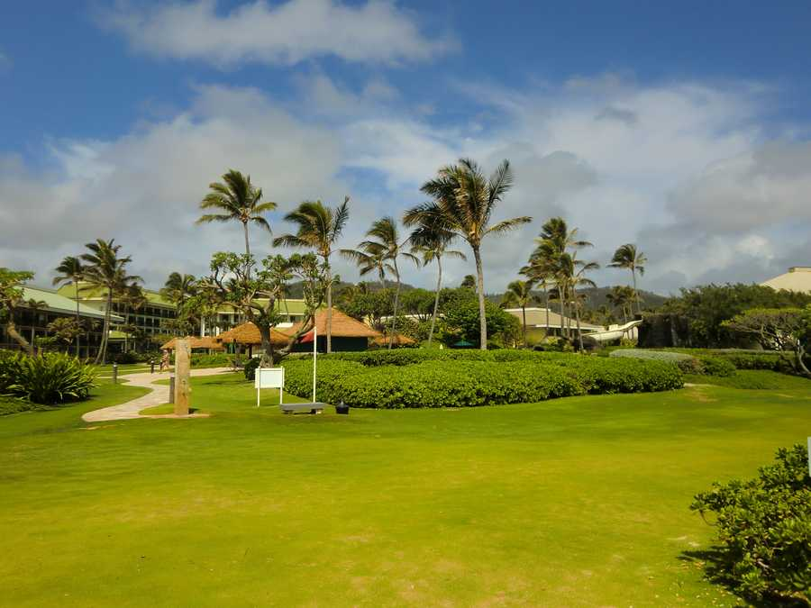 Maui hotel. The Holiday Vacations travel group enjoyed staying at beaches and close by swimming pools.
