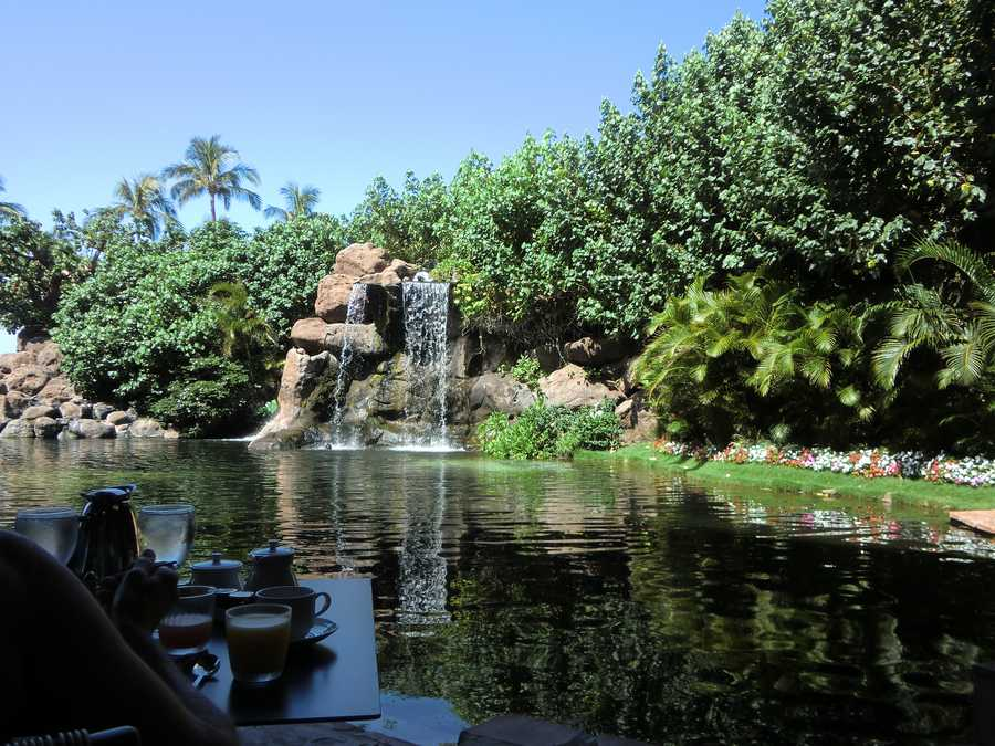 Sitting poolside having breakfast at the Maui hotel is an incredible sight to wake up to.