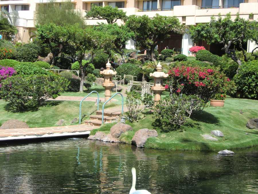 Excellently maintained gardens and white swans make for great views while walking around the hotel grounds.