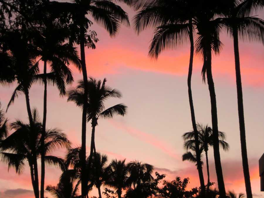 The sun sets as everyone starts to enjoy the food and festivities from the Luau in Maui.
