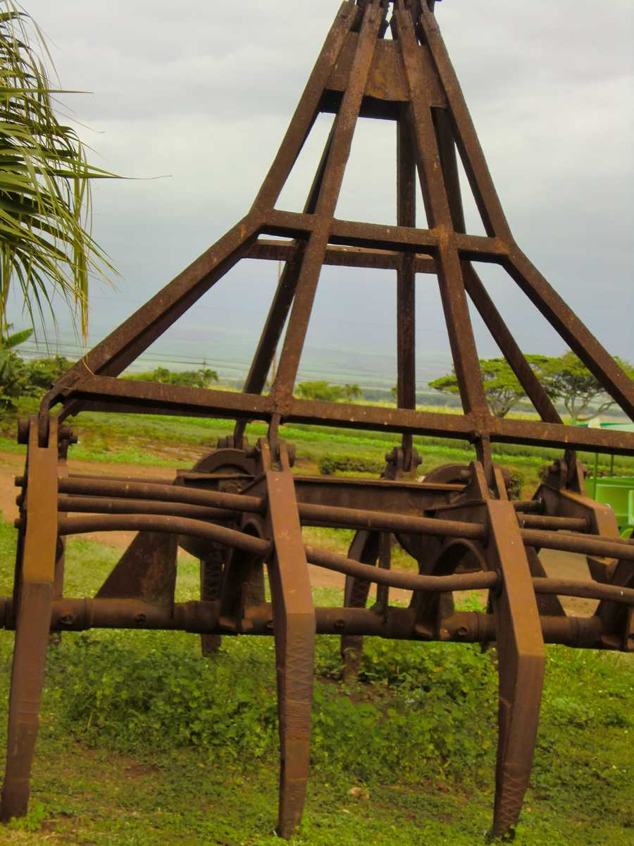 Some equipment at the Maui Tropical Plantation.